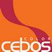 Cebos-color – купить декоративные покрытия для стен в Москве